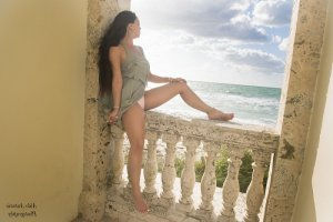 Arthi call girls in Palm River-Clair Mel Florida